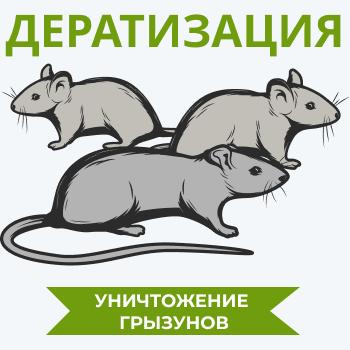 Заказать дератизацию - «Экомир»