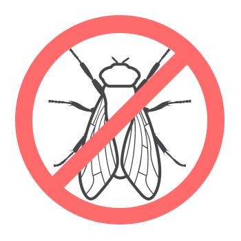 Уничтожением мух занимается дезстанция «Экомир»