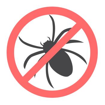 Уничтожением пауков занимается дезстанция «Экомир»